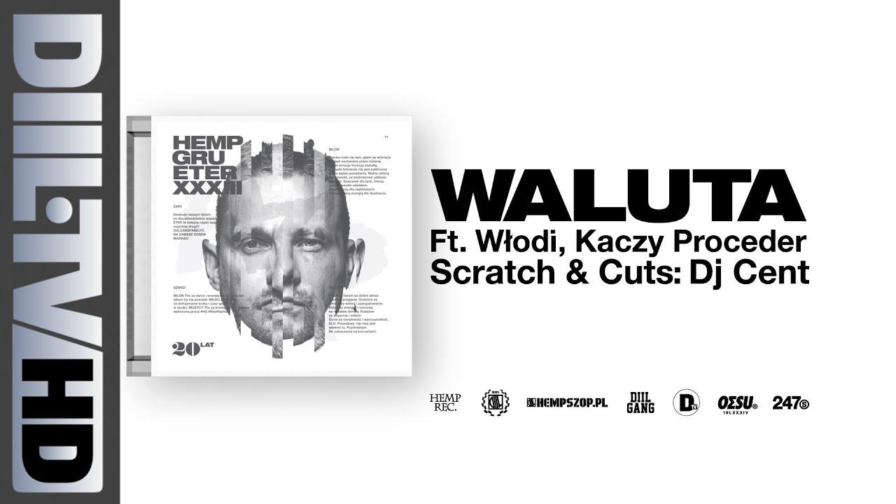 Hemp Gru - Waluta ft. Kaczy, Włodi (prod. Szwed SWD, scratch/cuts DJ Cent) [DIIL.TV]