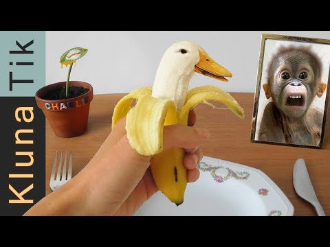 Eating a GENETICALLY MODIFIED (GMO) BANANA!!!  Kluna Tik Dinner #79 | ASMR eating sounds no talk