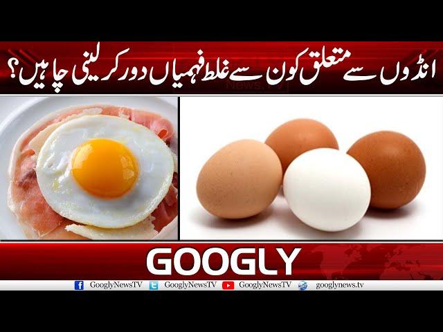 Andon Sai Mutaliq Konsi Ghalat Fehmian Dour Kar Laine Chahiyain? | Googly News TV