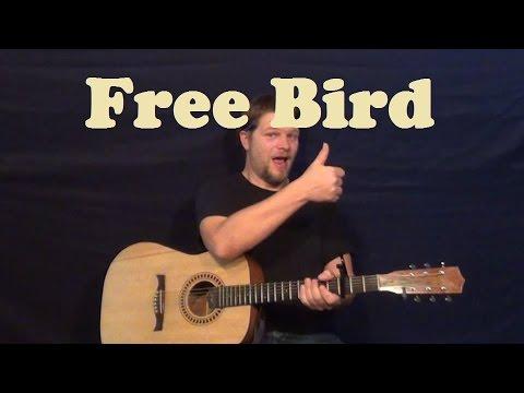 Free Bird (Lynyrd Skynyrd) Easy Strum Guitar Lesson Licks How to Play Freebird Tutorial