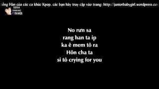 [Phiên âm tiếng Việt][Lyrics Video] Because I'm Stupid - SS501