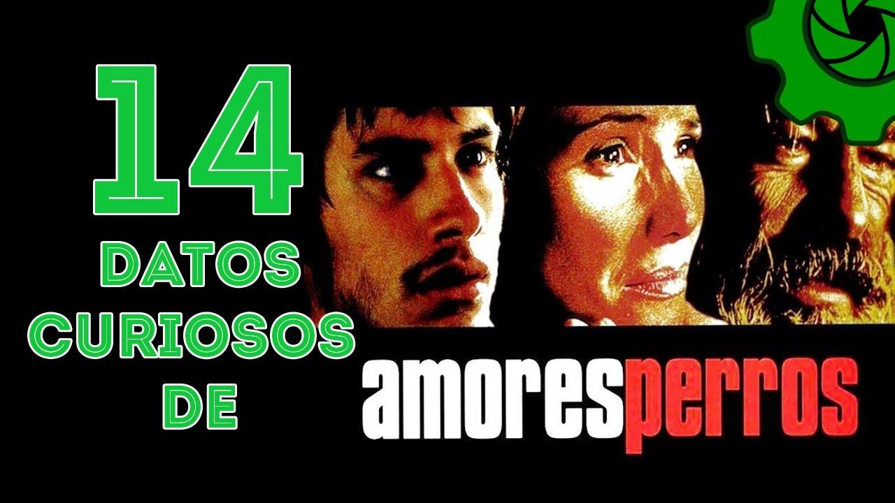 Amores Perros Escenas Hot vanessa bauche más allá de amores perros:el siglo mx