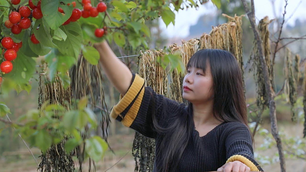 【二米炊烟】Mei Cai | Chinese Traditional Preserved Vegetable 用3蒸3曬的傳統方法,把綠色蔬菜變成一道美味的梅乾菜