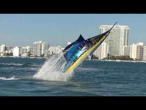 Seabreacher Sailfish hits Miami