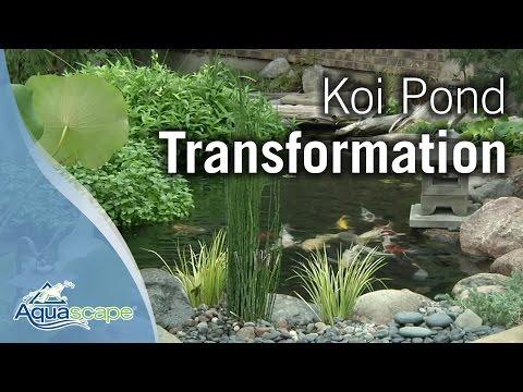 koi-pond-transformation-with-aquascape