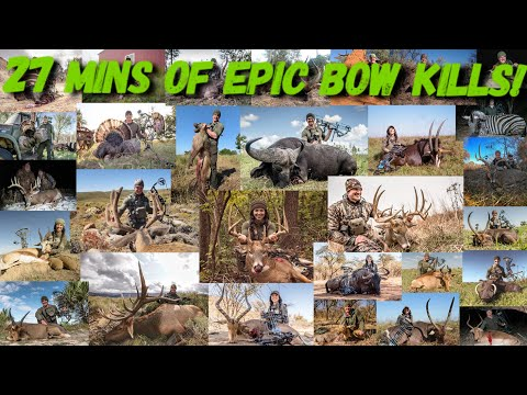 Epic Bow Kill Compilation From Last Year!  Bowmar Bowhunting  