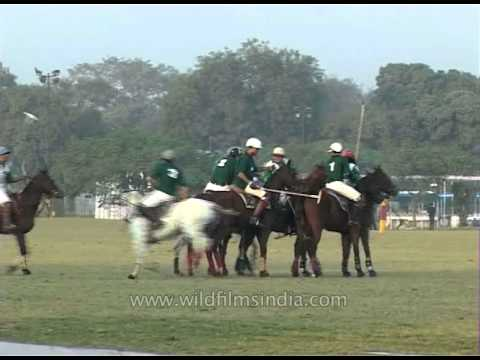 Royal sport of horse polo in New Delhi, India