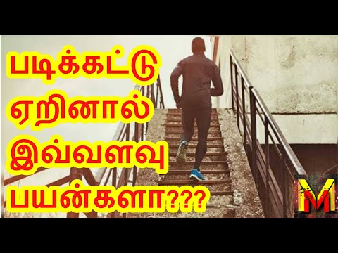 shocking!!!-is-it-??-||-benefits-of-stairs-climbing!!-||-master-mind