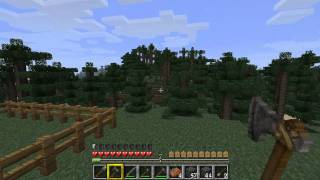 Let's Play Minecraft (Part 020) - Die verlorene Kuh