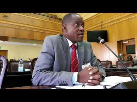 Parliament Interviews Lovemore Kurotwi on Diamond Mining Activities (1/4. 22 Feb 2018)