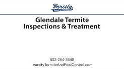 Glendale Termite Inspections & Treatment with Varsity