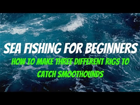 SMOOTHOUND RIGS - SEA FISHING RIGS