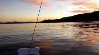 Sailing the Bay on a Beneteau Oceanis 37 II