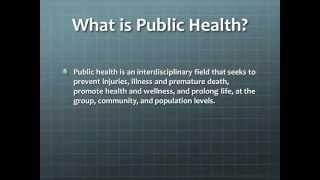 Master of Public Health Webinar - Hofstra University