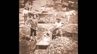 APUSH Stanley Gold Rush 49ers