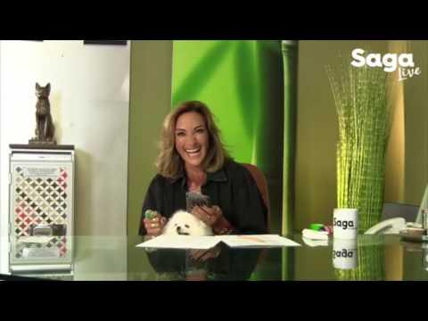 SAGA LIVE 3 de Agosto 2017  Entrevista Héctor Suárez