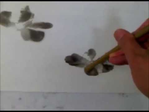 How to Paint Dogwood Flowers in Sumi or Chinese Brush Painting