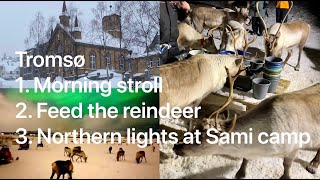 day-8-northern-lights-of-scandinavia-insight-vacations