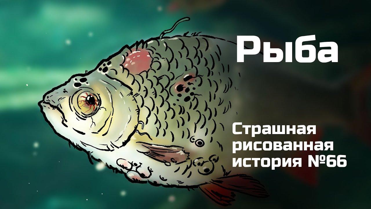 Рыба. Страшная рисованная история №66 (анимация)