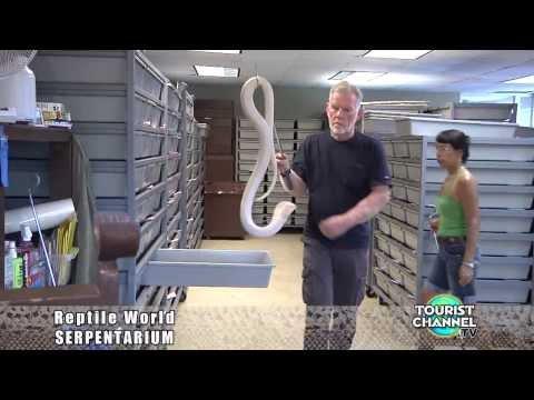 Reptile World Serpentarium St. Cloud Florida