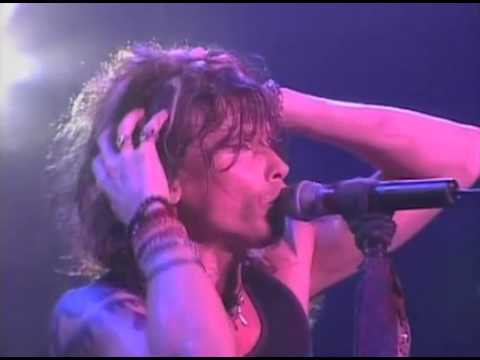Aerosmith  I Dt Want to Miss A Thing  in Japan
