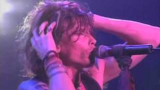 Скачать Aerosmith I Don T Want To Miss A Thing Live In Japan