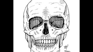 How to Draw Stone Cold Skull | Drawing TV ID
