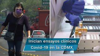 En el ensayo con Mesilato de camostat y Artemisia annua participarán 360 pacientes con Covid-19 de las alcaldías de Tlalpan, Tláhuac, Iztapalapa, e Iztacalco, en CDMX