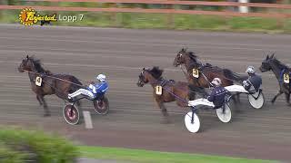 Vidéo de la course PMU PRIX E3 UTTAGNINGSLOPP - STON (LOPP 7)
