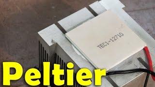 Module Peltier (Expérimentation)