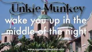 UNKLE MUNKEY - Hotel California (Eagles cover; with lyrics)