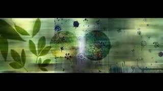 Abakus - Rainbow Warrior
