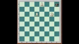 Шахматы для начинающих. Основы шахмат 2. Мат одинокому королю
