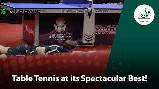 Table Tennis at its Spectacular Best