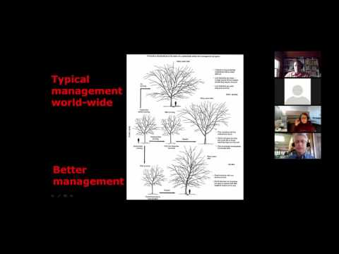 An approach to pruning you won't forget By: Dr. Ed Gilman