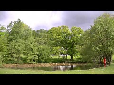 Singleton Park, Swansea, in Spring