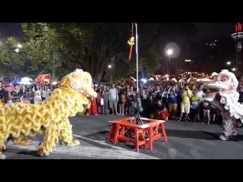 NZ Auckland Lantern Festival 2013: Dragon and Lion Dance
