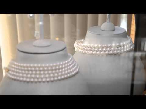 Wyatt Austin Jewelers Video - Schaumburg, IL United States