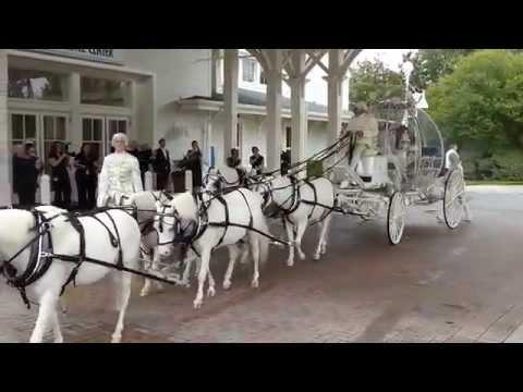 Disney Wedding: Cinderella Horse Drawn Carriage