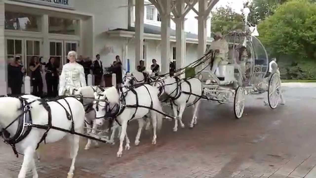 disney wedding cinderella horse drawn carriage youtube