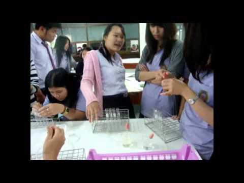 แผนการจัดการเรียนรู้ ปัจจัยที่มีผลต่อภาวะสมดุล (การเปลี่ยนแปลงความเข้มข้น)