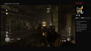 Call Of duty WW2 Zombies Fun