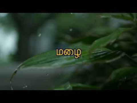 Save trees - tamil
