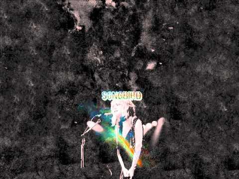Songbird ( Fleetwood mac) by Alie Ludema
