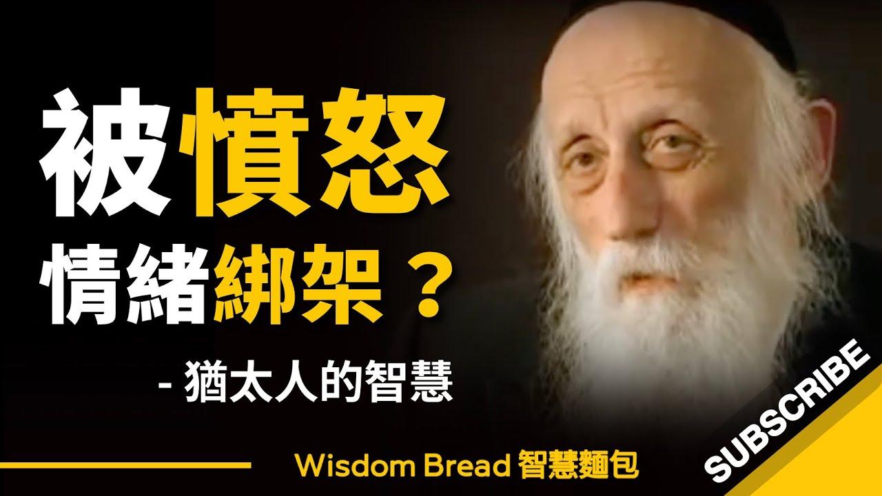 如何不被憤怒情緒綁架?猶太拉比的智慧 - Rabbi Dr. Abraham Twerski(中英字幕)