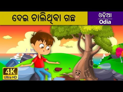 ଦେଇ ଚାଲିଥିବା ଗଛ - The Giving Tree in Odia - 4K UHD - Odia Fairy Tales