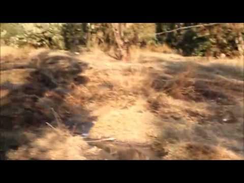 Raw sewage spilling in Krugersdorp
