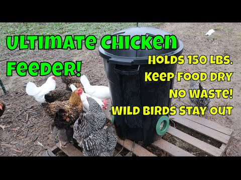 DIY Automatic Chicken Feeder! Hold 150 lbs. of Feed!