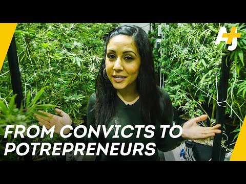 Why Oakland Wants Ex-Convicts To Grow Weed | AJ+