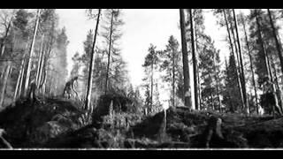 """""""А зори здесь тихие"""" - эпизод на водопаде Ахенокоски"""
